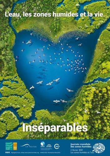 les_zones_humides_et_l_eau_sont_ins_parables_