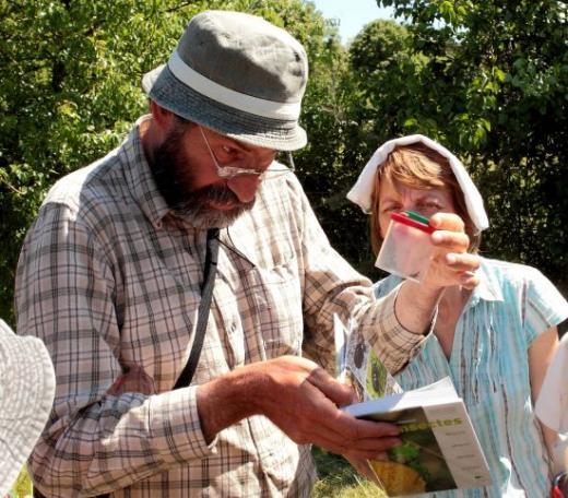 sortie-terrain-vincent-albouy-a-quoi-servent-les-insectes-dans-la-nature-et-au-jardin-?