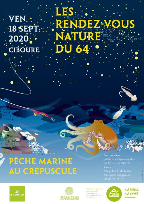 rdv-nature-du-64-:-peche-marine-au-crepuscule