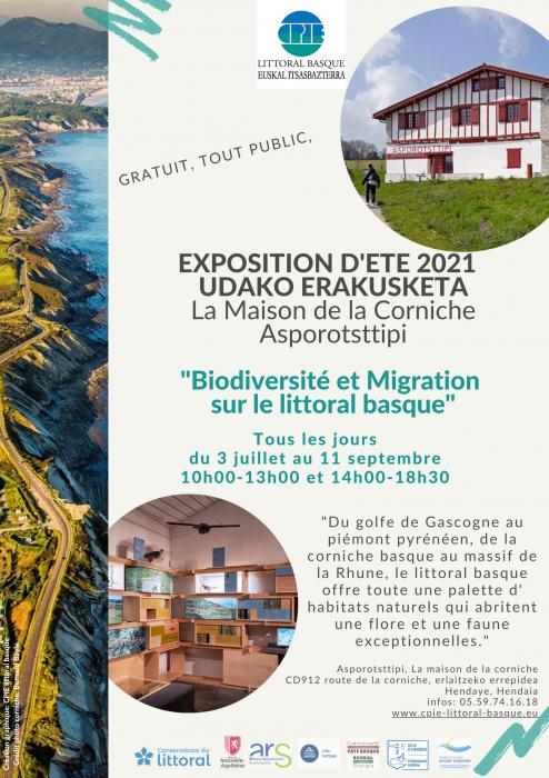biodiversit_et_migration_sur_le_littoral_basque