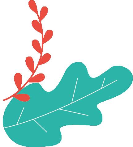 adherez-au-conseil-de-developpement-du-pays-basque-(cdpb)
