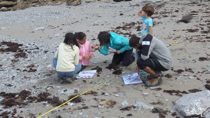 formation-gratuite-au-programme-plages-vivantes